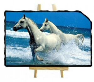 Ardoise photo avec des vagues coin coupé